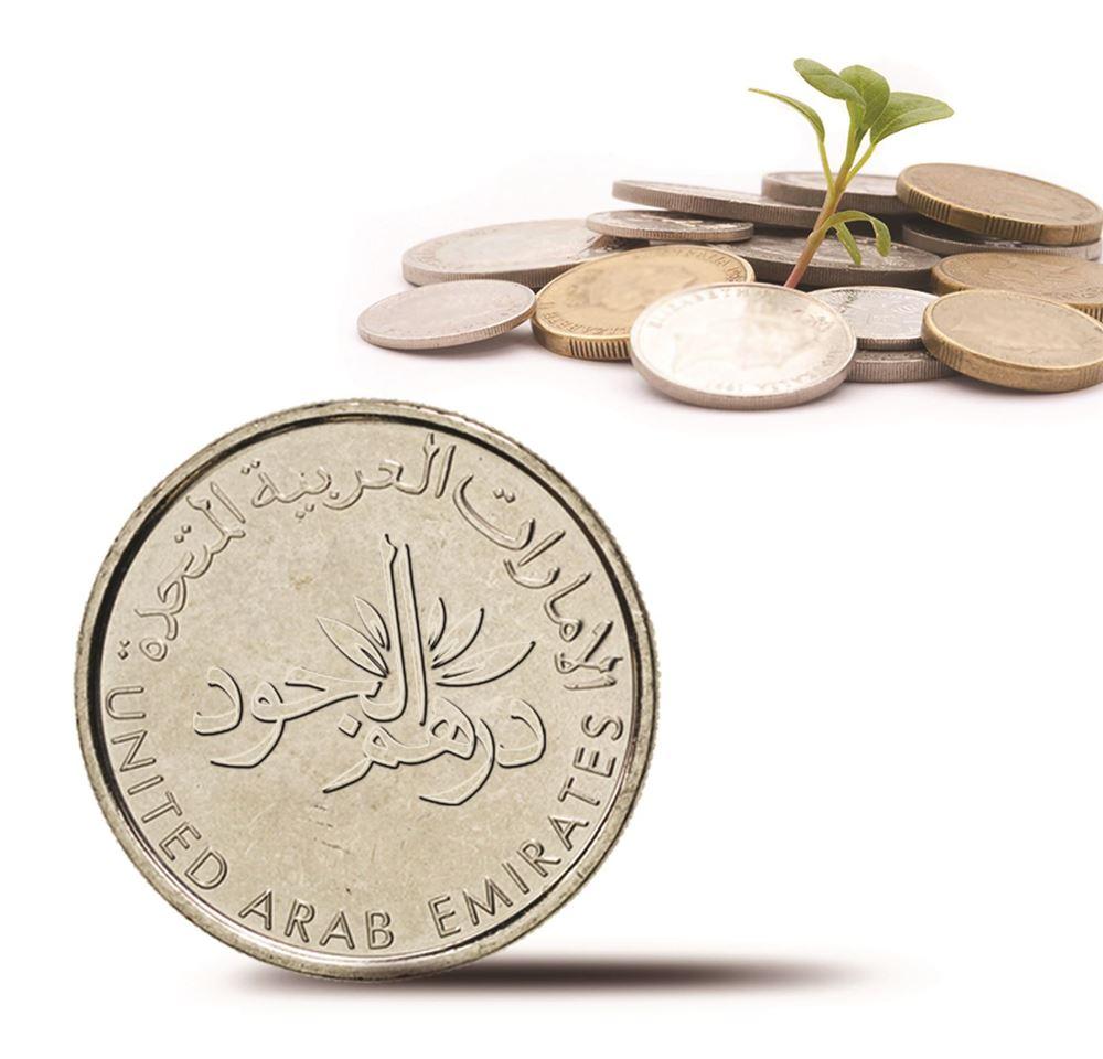 Picture of Lefco - generosity dirham Project number 7195/2021