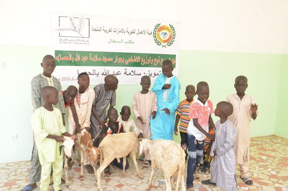 Picture of Lefco - sacrificial animal project Project number 7193/2021